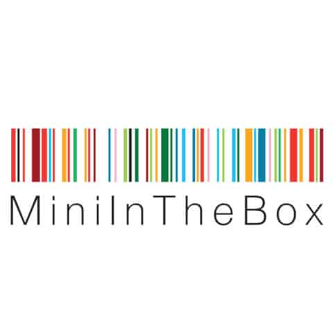 mini in the box